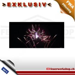 Feuerwerksbatterie Epilonium