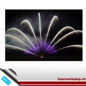 Silberkomet mit Sternen (violett)