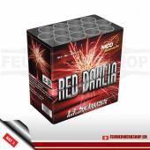 *Red Dahlia* Batteriefeuerwerk