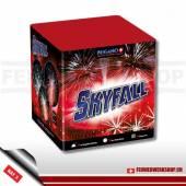 Feuerwerk 1 August *Skyfall* Batterie