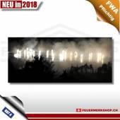 F4 Feuerwerk *Watercake – Silver Fountain*