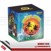 *Tropical Island* 25 Schuss Feuerwerk von Nico